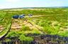 沙漠坚守者:20年11万亩荒漠变绿洲