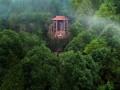 中国最大佛胸像被弃荒野
