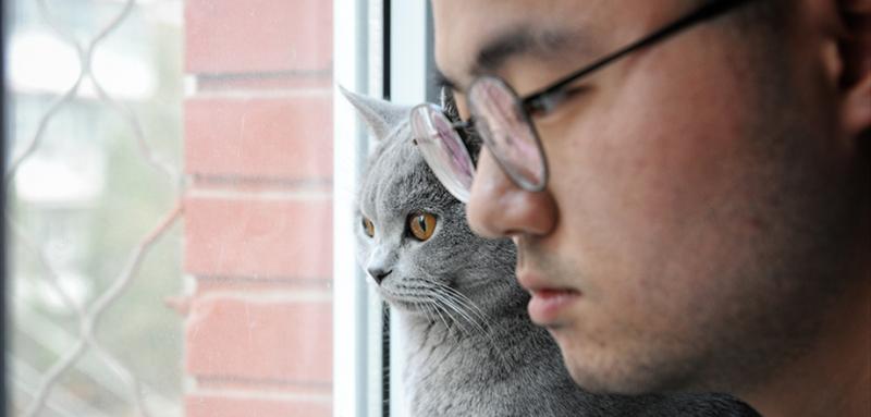 """他喜欢陪着猫在窗户前观察楼下的一切动态。有时候他会很好奇,到底是什么让猫看得如此专注。养猫真的能排解孤独感吗?""""养猫并不是因为孤单,如果想要用某种宠物代替另一半的话,猫应该不会是很好的选择。可能我觉得自己的性格更像猫吧。猫可以自己与自己相处,和我一样。"""""""