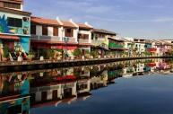 马六甲河疑遭污染,河水变黑河鱼死亡