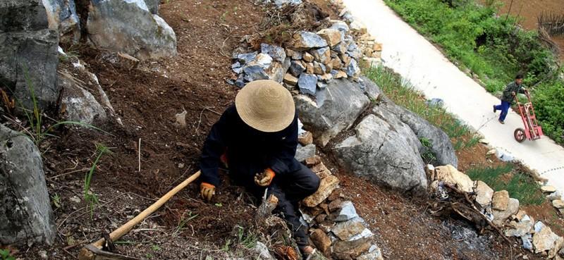 图为曾付学在门前荒山上造地。