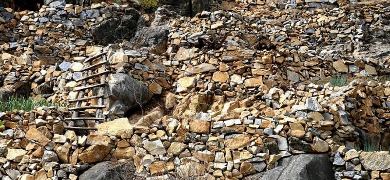 7年来,曾付学已经开荒造出了4亩田地。图为修砌整齐的石坎浸透了曾付学的心血。