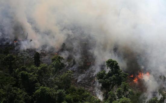 亚马逊森林烟雾弥漫,透过浓烟能看到森林中的火光。