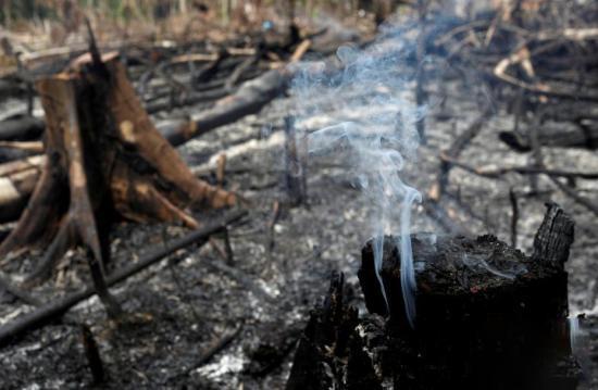 亚马逊森林大火截至目前已持续燃烧超过10天。