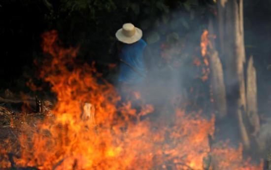 据悉,8月份,巴西共发生了5000多起火灾,其中帕拉州发生了1380起,其次是马托格罗索州790起,和亚马逊州503起,这3个州都以亚马逊雨林作为其唯一的或者部分生物群落。
