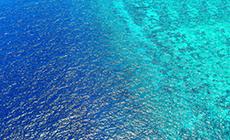 憋气挑战:把呼吸还给海洋