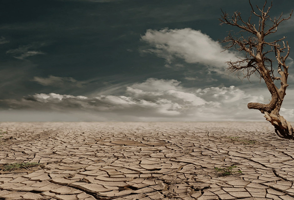 desert-drought-dehydrated-clay-soil-60013_副本