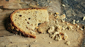 教宗方济各:我们在浪费穷人的食粮