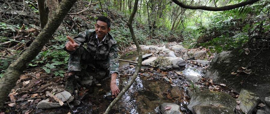 """10月16日,皮海云在江西新干黎山林场连坑分场向记者介绍林地情况。今年49岁的皮海云是江西省吉安市新干县黎山林场的护林员,1989年起开始从事护林、育林工作。他在林区巡视平均每天要走20多公里,30年的时间里累计行走20余万公里,黎山林场处处留下他的足迹。 30年来,皮海云看护的林区从未发生过大面积森林病虫害,以及重大侵占林地等案件。皮海云多次被林场评为劳动模范、优秀共产党员,还于2018年荣获新干县""""十佳最美职工""""称号。"""