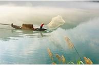 """长江已到""""无鱼""""等级,禁渔刻不容缓"""