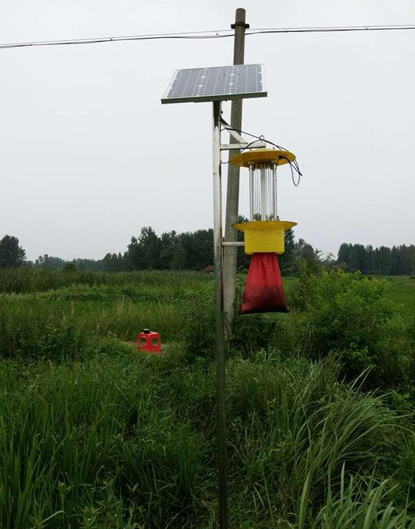 太阳能杀虫灯给农业生产带来便捷