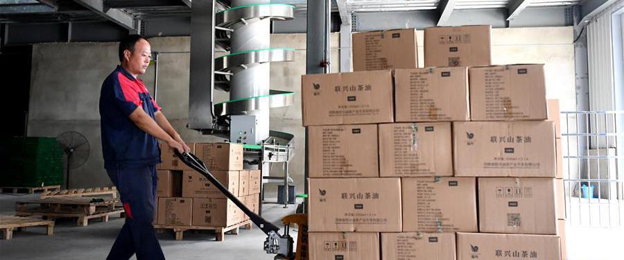 8月25日,工作人员在河南省光山县一家油茶加工企业装卸车间内作业。