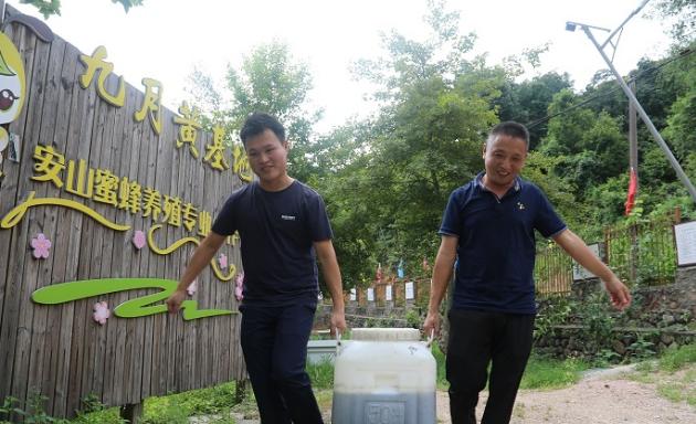 2016年,他的养殖规模突破了200箱,年获利14万余元。看着魏兴旺养蜂生意越来越红火,村里渐渐有人开始效仿,纷纷养起了蜜蜂。和魏兴旺一样,一些养殖户在起步时也遇到了蜂群的分蜂、育王、蜂病防治等问题。面对村民们的困难和求助,魏兴旺毫不犹豫地伸出援手,免费提供技术帮助。