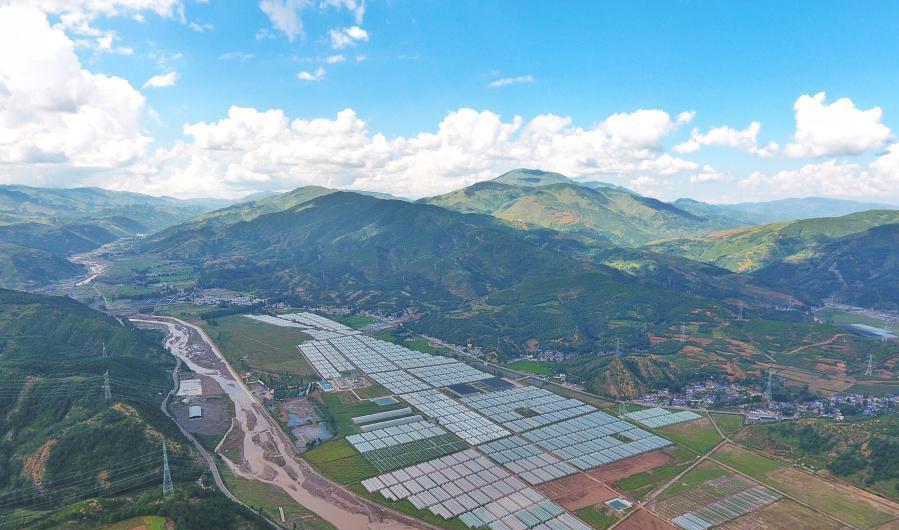 这是8月10日在四川省凉山彝族自治州昭觉县拍摄的涪昭现代农业产业园全景(无人机照片)。